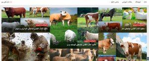 شرکت کشاورزی و دامپروری سرافراز هزارمسجد